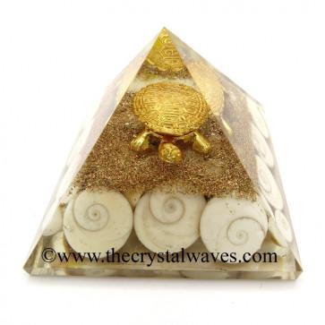 Gomti Chakra / Shiva Eyes Pearl Orgone Pyramid With Fengshui / Vastu Tortoise