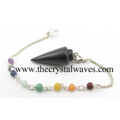 Black Agate Smooth Pendulum With Chakra Chain